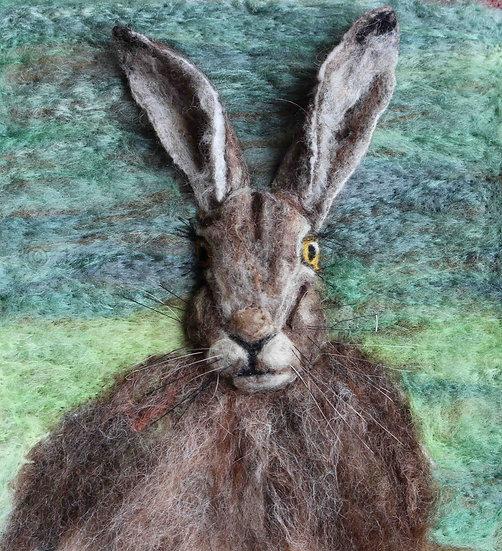 Hare 17