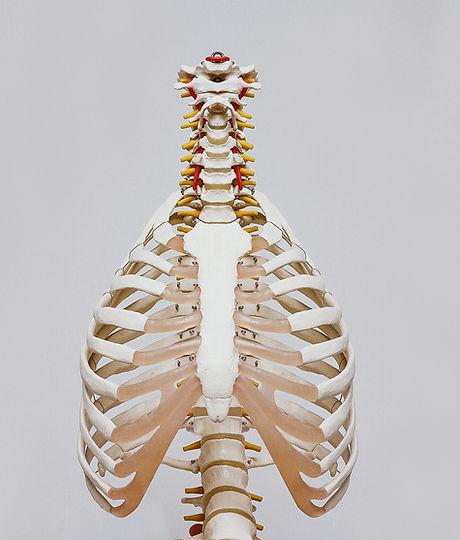 osteopathie-nackenschmerzen