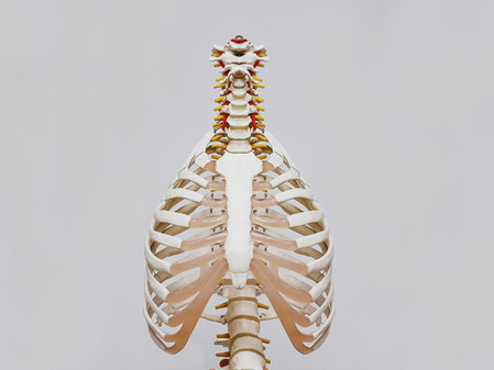 Part 1: Can your posture affect your breathing, and how should you breathe?