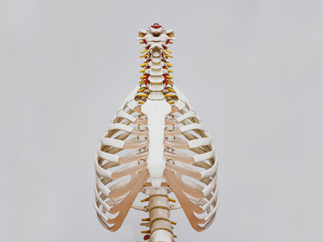 Can I Reverse Osteoporosis?