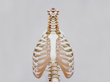 Yogamoov, le yoga de l'anatomie