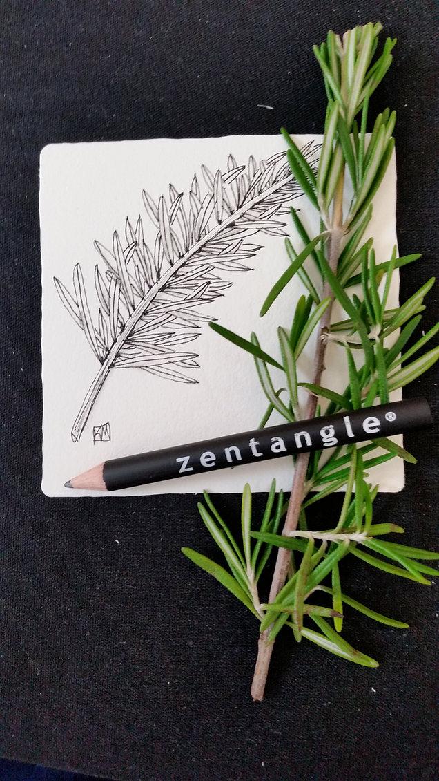 Zentangle art patterns: Easy doodling | kim-mastromartino