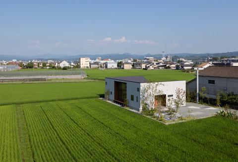 ushi_ta_001.jpg