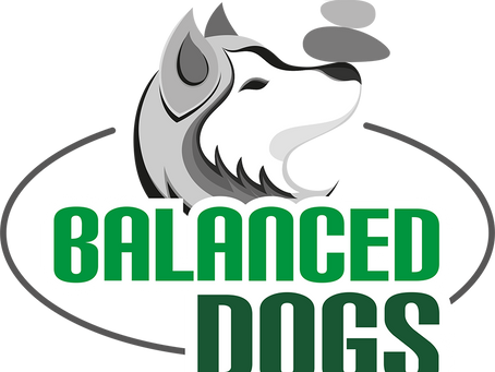 Nuovo logo!