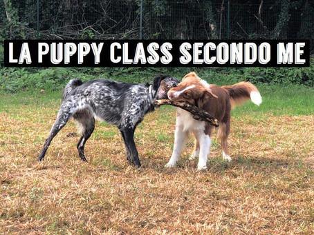 La Puppy Class secondo me