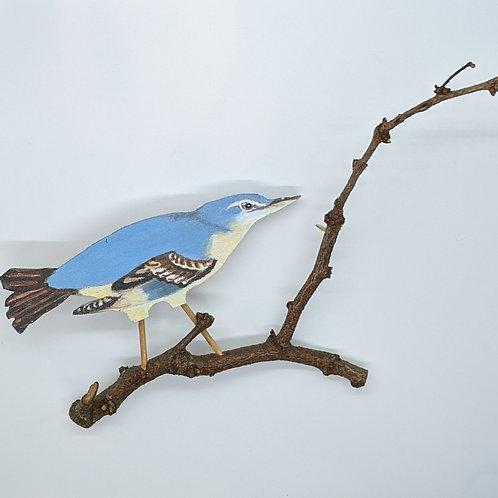 Blue Warbler by Annie Wandell