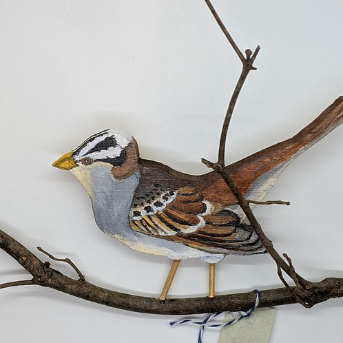 White Crowned Sparrow by Annie Wandell