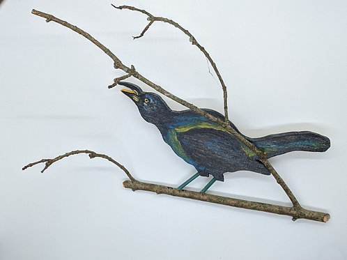 Grackle by Annie Wandell