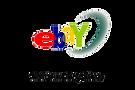handpan for sale on ebay.png