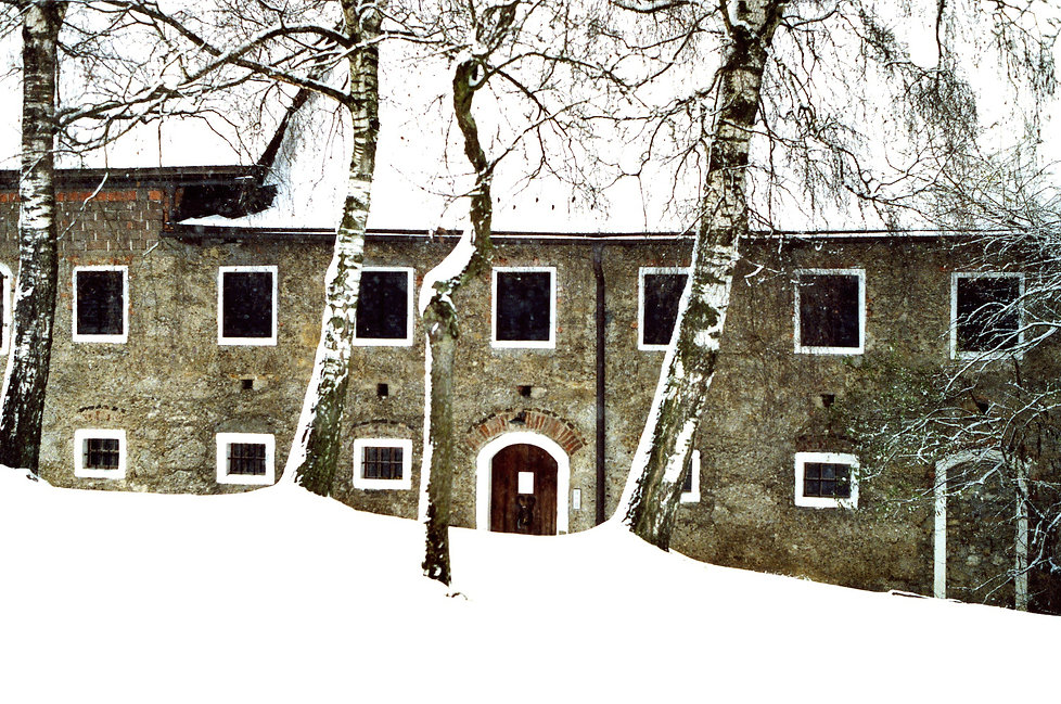 Christiaan Tonnis - Thomas Bernhards Haus 2