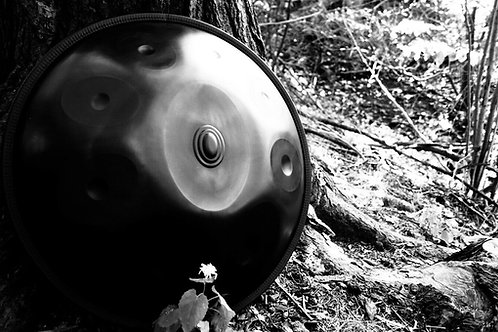 Handpan by Ohm - D Phrygian