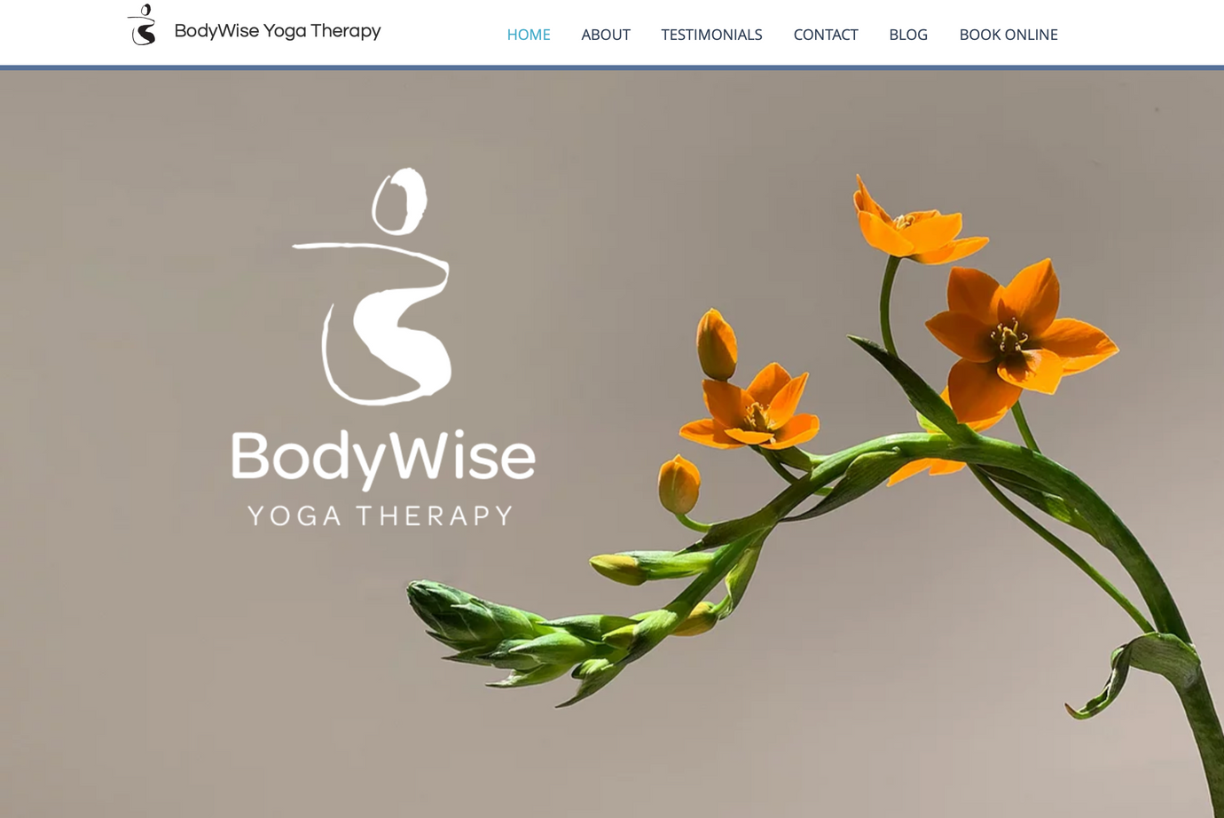 BodyWise Yoga Therapy