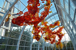 Museo Chihuly