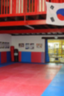 salle-musculation-albi-elegant-taekwondo