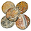 Thumbnail: Earth Stone