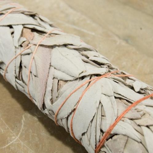 White Sage Stick (Lg)