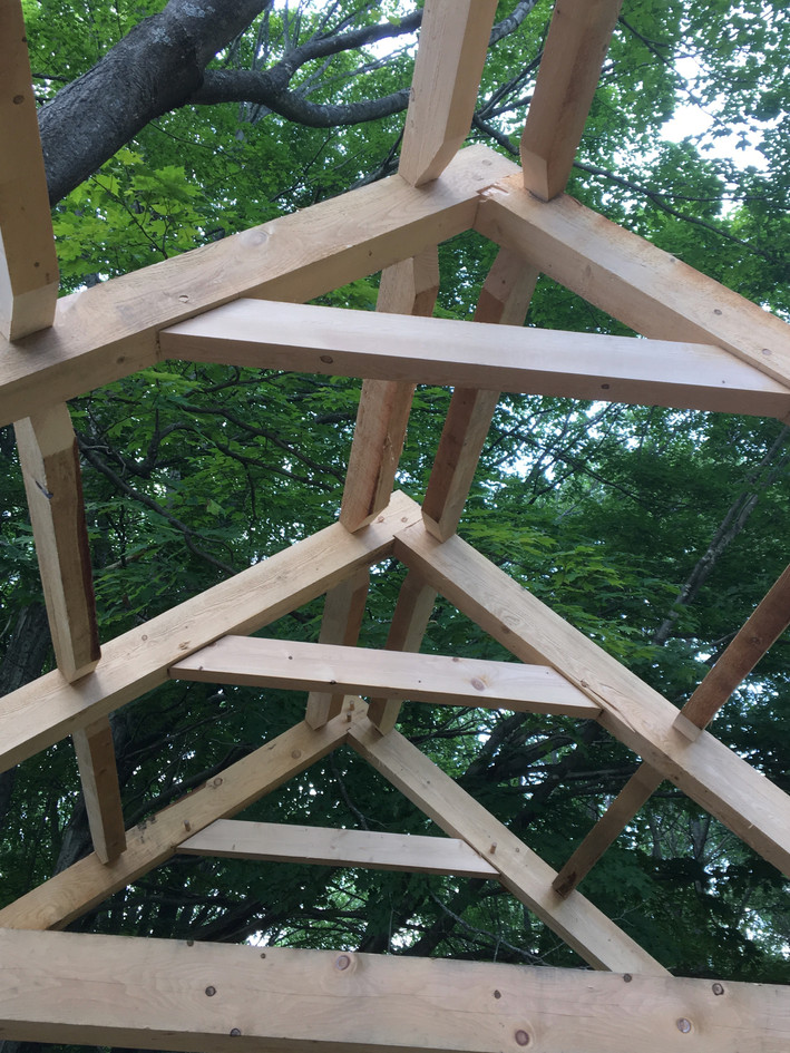 Rafter and Purlins Assembled