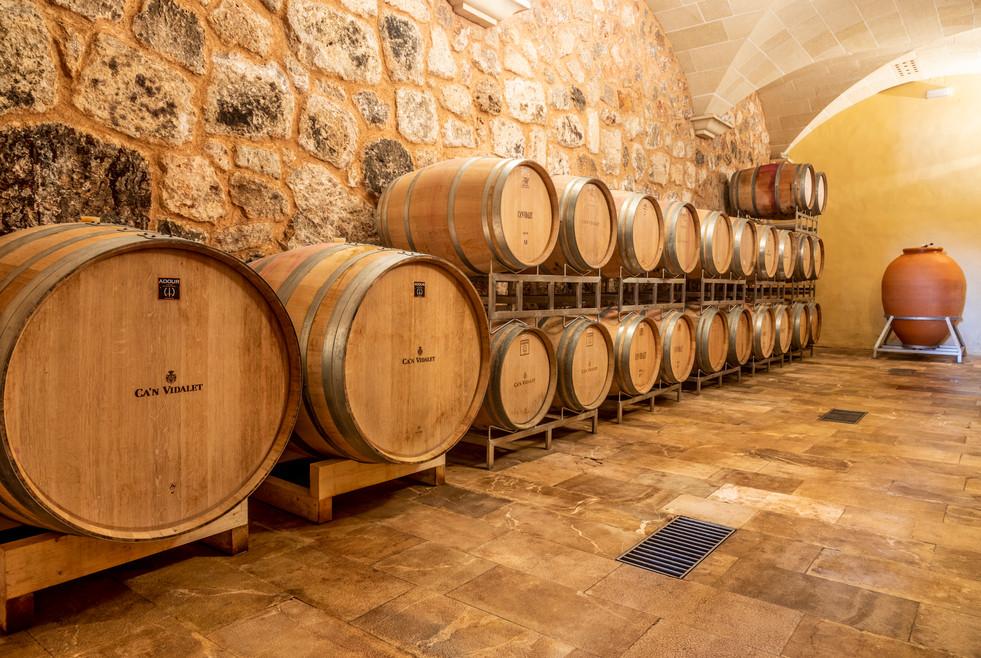 Can Vidalet barrel room