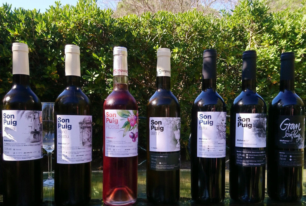 Son Puig wine selection