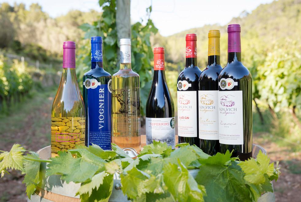 The wine selection at Son Vich de Superna