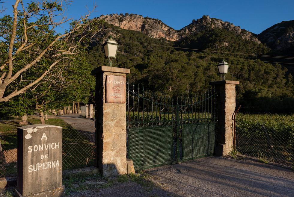 Entrance to Bodega Son Vich de Superna
