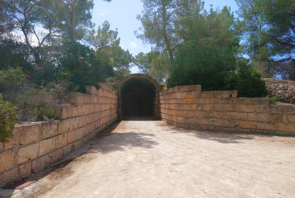 Bodegas Bordoy cave