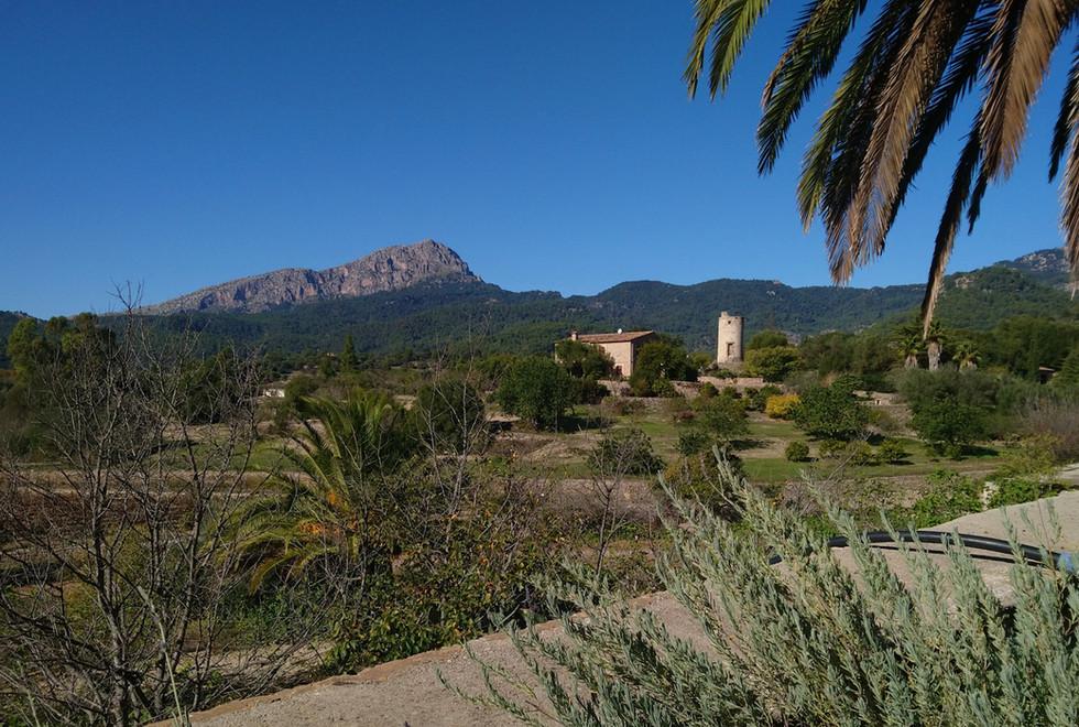 Son Puig surrounding countryside