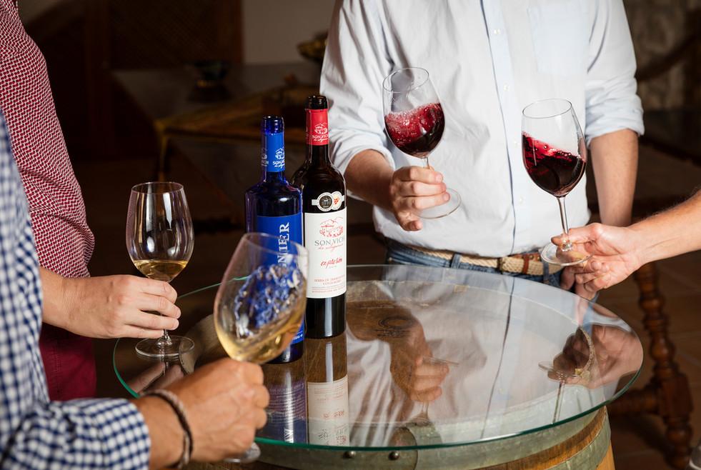 Tasting wines at Son Vich de Superna