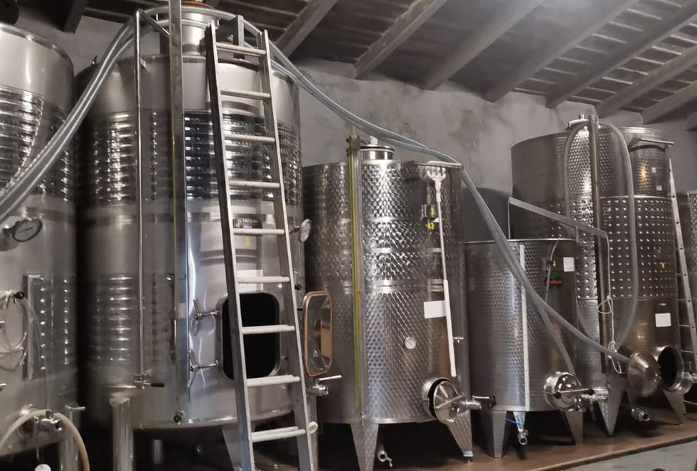 Bodega Olorón fermentation tanks