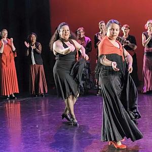 School of Flamenco Dance Arts