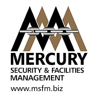 mercuritysecurity.png