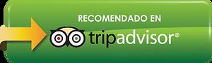 Logo-TripAdvisor-1.png
