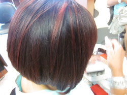 HAIR COLOUR STUDIO - STYLE 12014