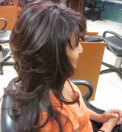 HAIR COLOUR STUDIO - STYLE 11816