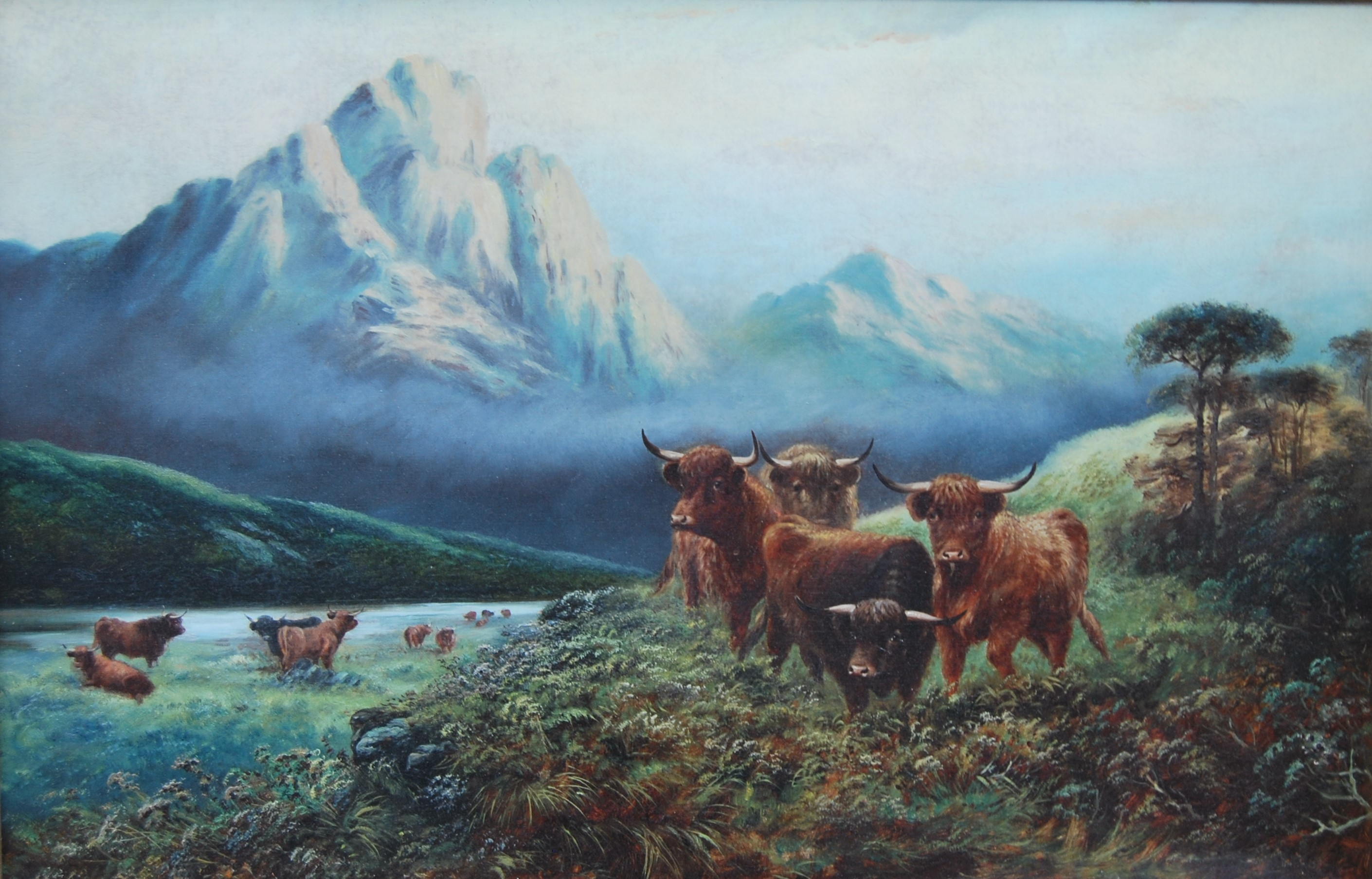 Highland scene with cattle