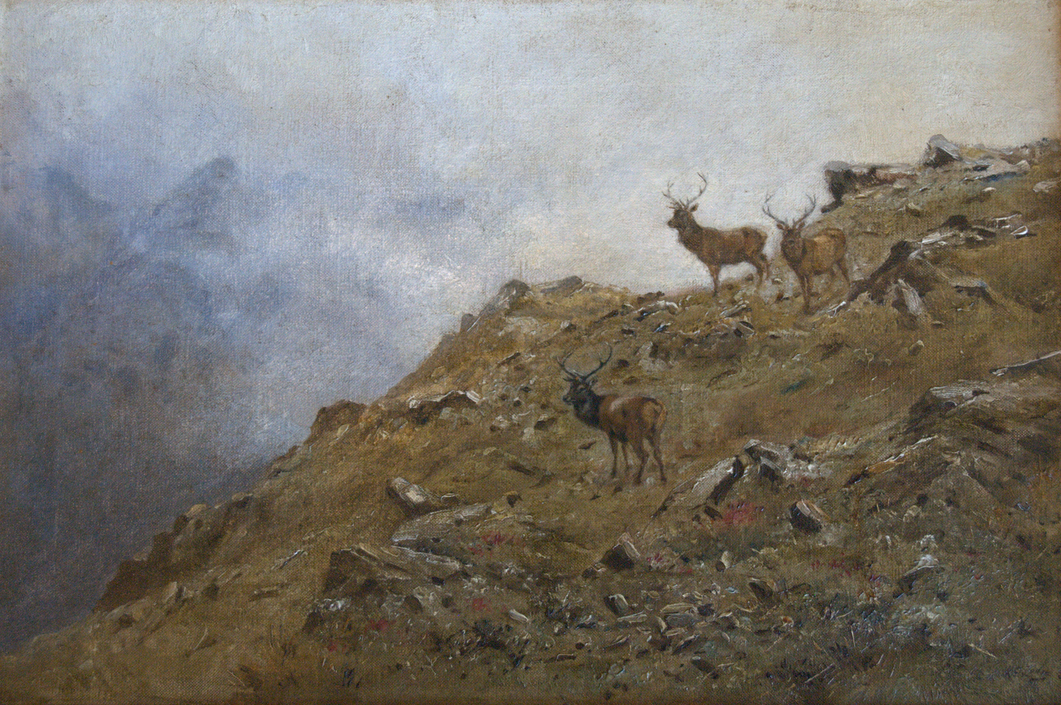 Stags on High Ground
