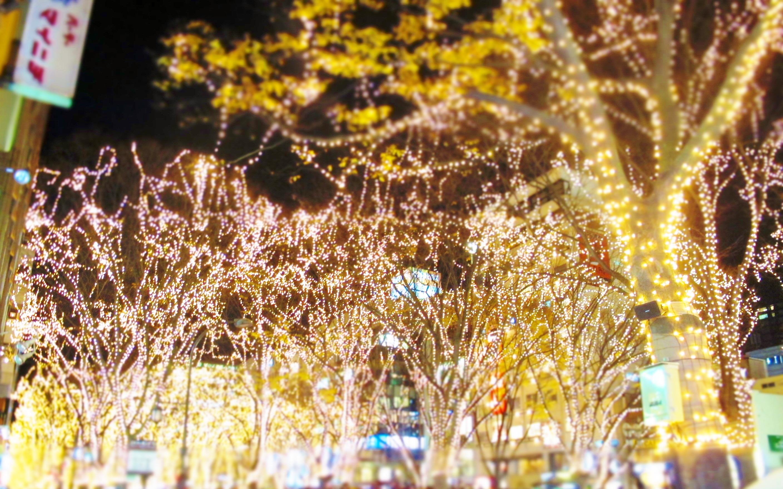 12月は絶好のロケーションで『光のページェント』をご覧いただけます