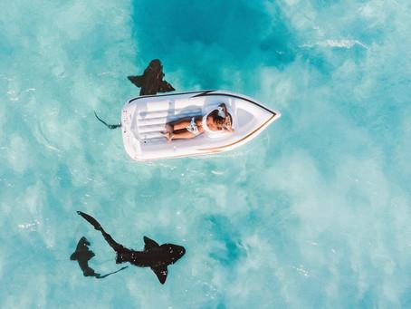 Nature at it's Best – Exuma, Bahamas