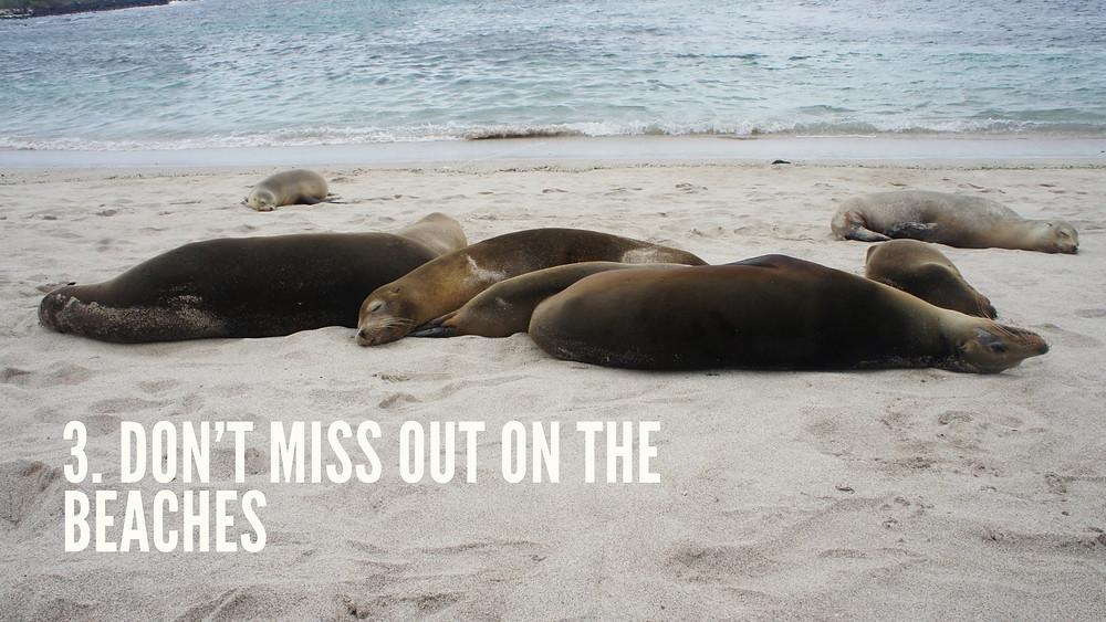 Beaches of Galapagos