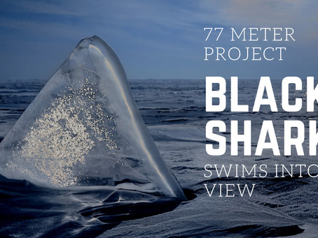 """New Build Project 77 Meter """"BLACK SHARK"""" Swims Into View"""