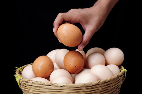 bigstock-All-eggs-in-one-basket-risk-m-2