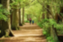 Woman and son walking in woods