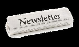 Financial Advisor Scottsdale - Wealth Plan Advisors - Newsletter