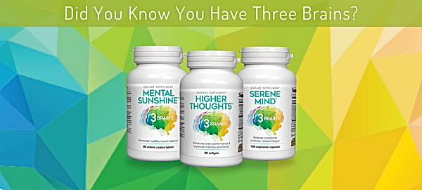 3 Brains supplements