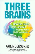 Three Brains book