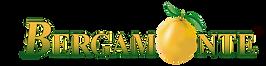 bergamonte logo_edited.png