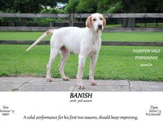 Banish.jpg