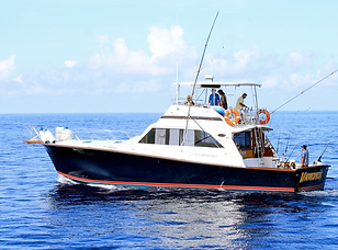 COZUMEL DEEP SEA FISHING 55' OCEAN YACHT