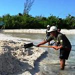 Cozumel Fishery restoration with Aquarius Fishing
