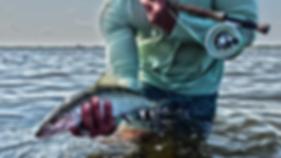 Cozumel fly fishing | Aquarius Fishing